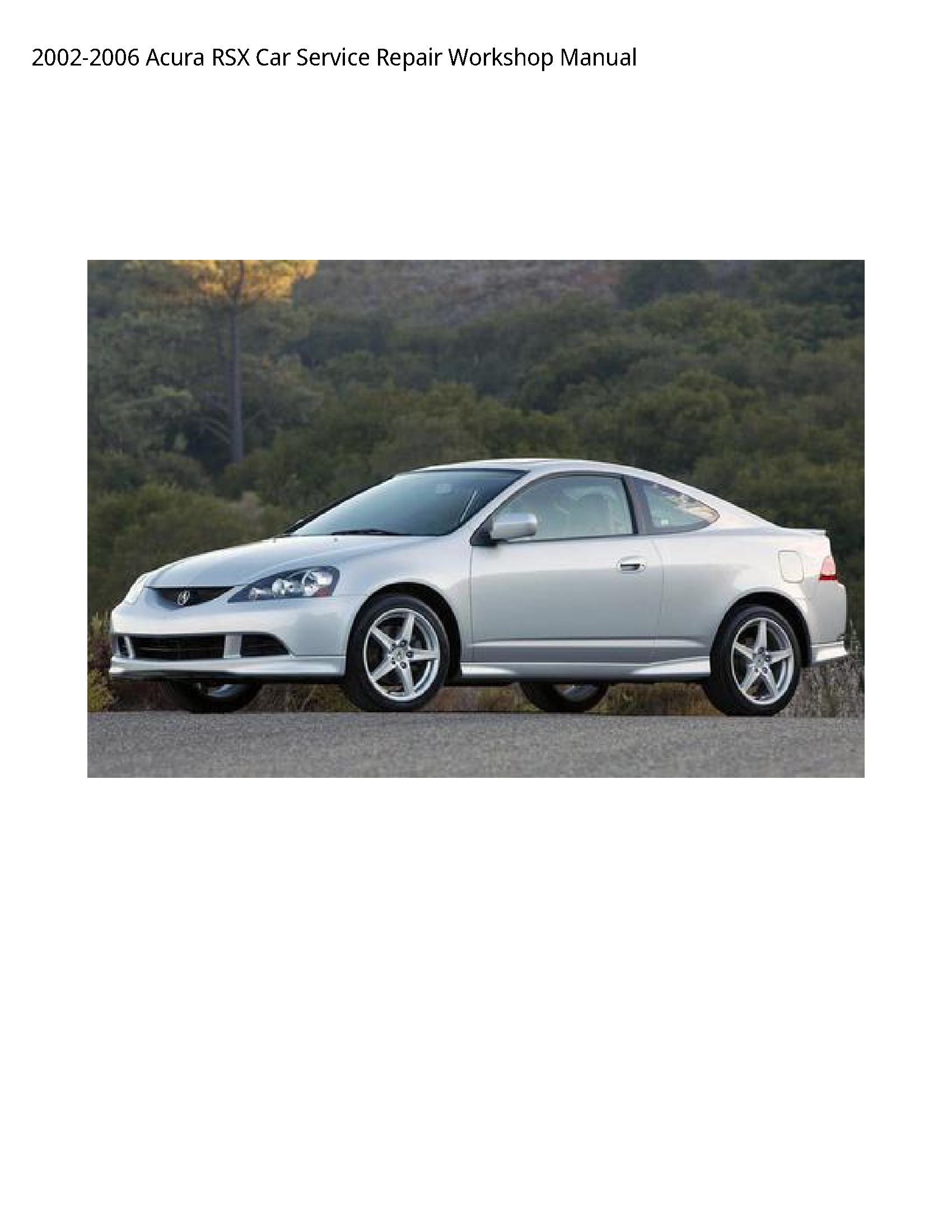 Acura RSX Car manual