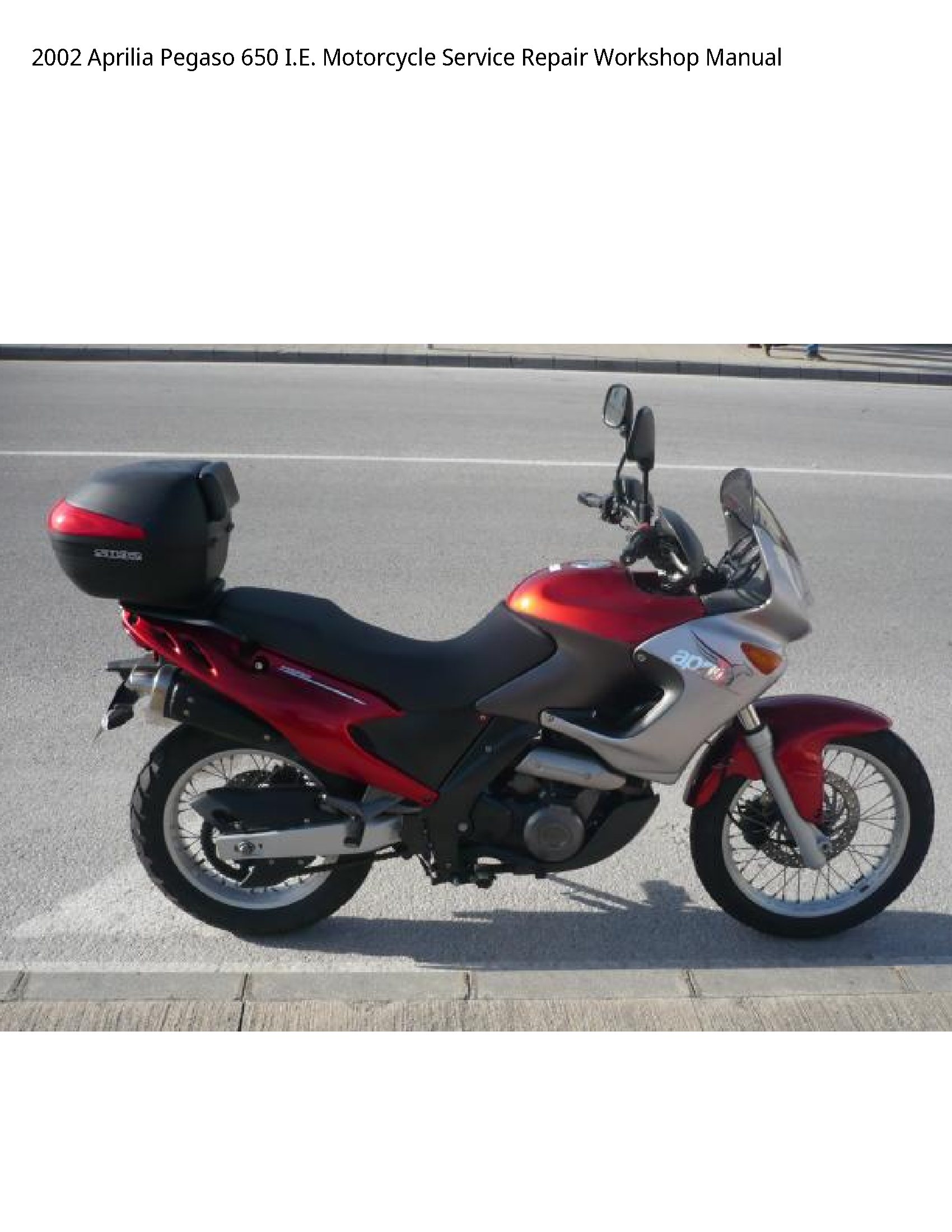 Aprilia 650 Pegaso I.E. Motorcycle manual