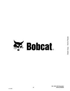 Bobcat 334 Hydraulic Excavator D Series manual pdf